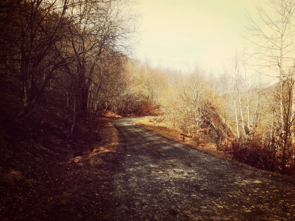 camminare-sulla-via-vandelli