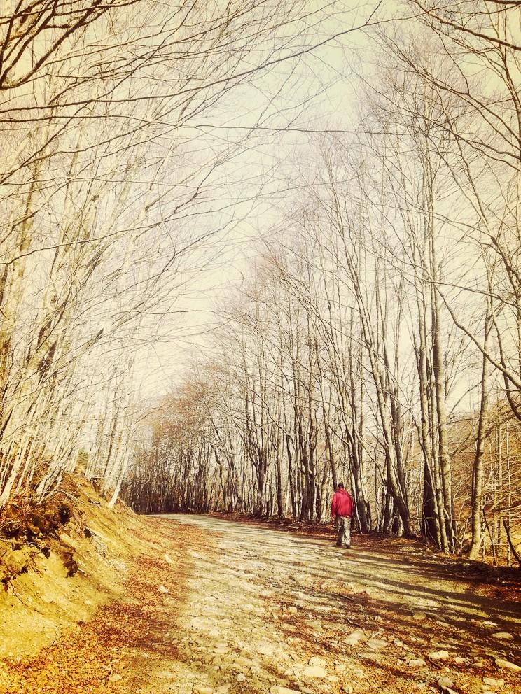 camminata-sulla-Vandelli