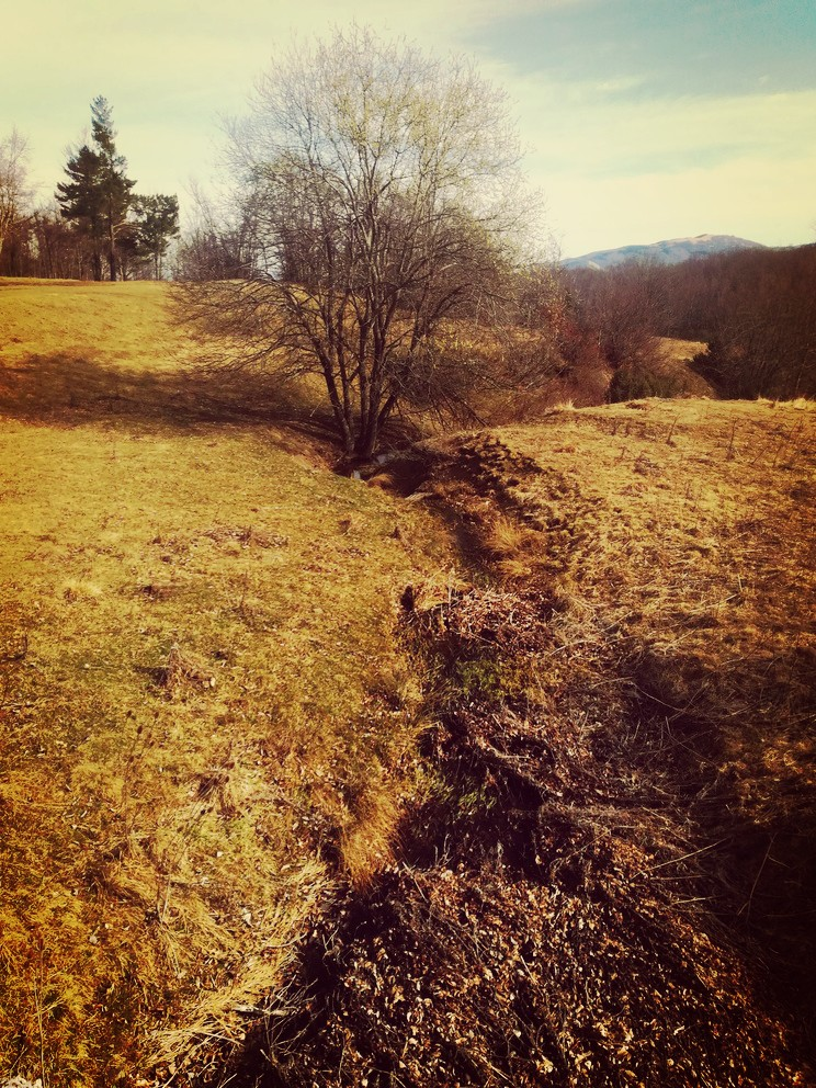 fine-inverno-via-vandelli
