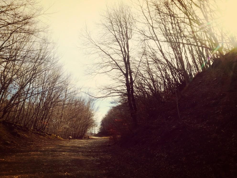 sentieri-via-vandelli