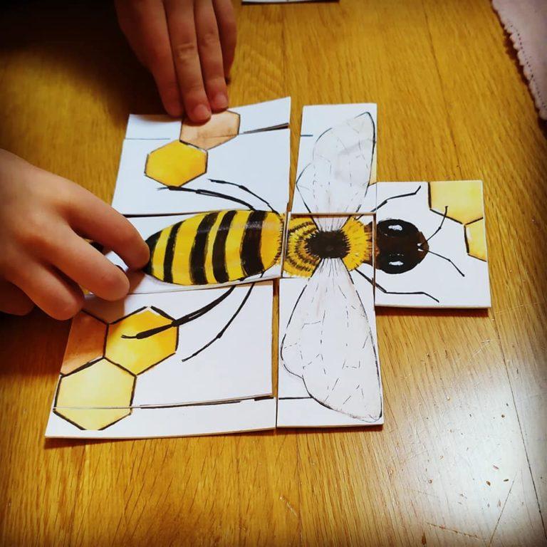 Studiare la natura con i bambini: le api